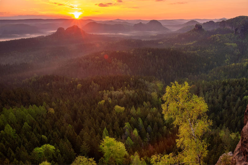 Autumn sunrise, saxon switzerland. fantastic colorful sunrise on the top of the rocky mountain
