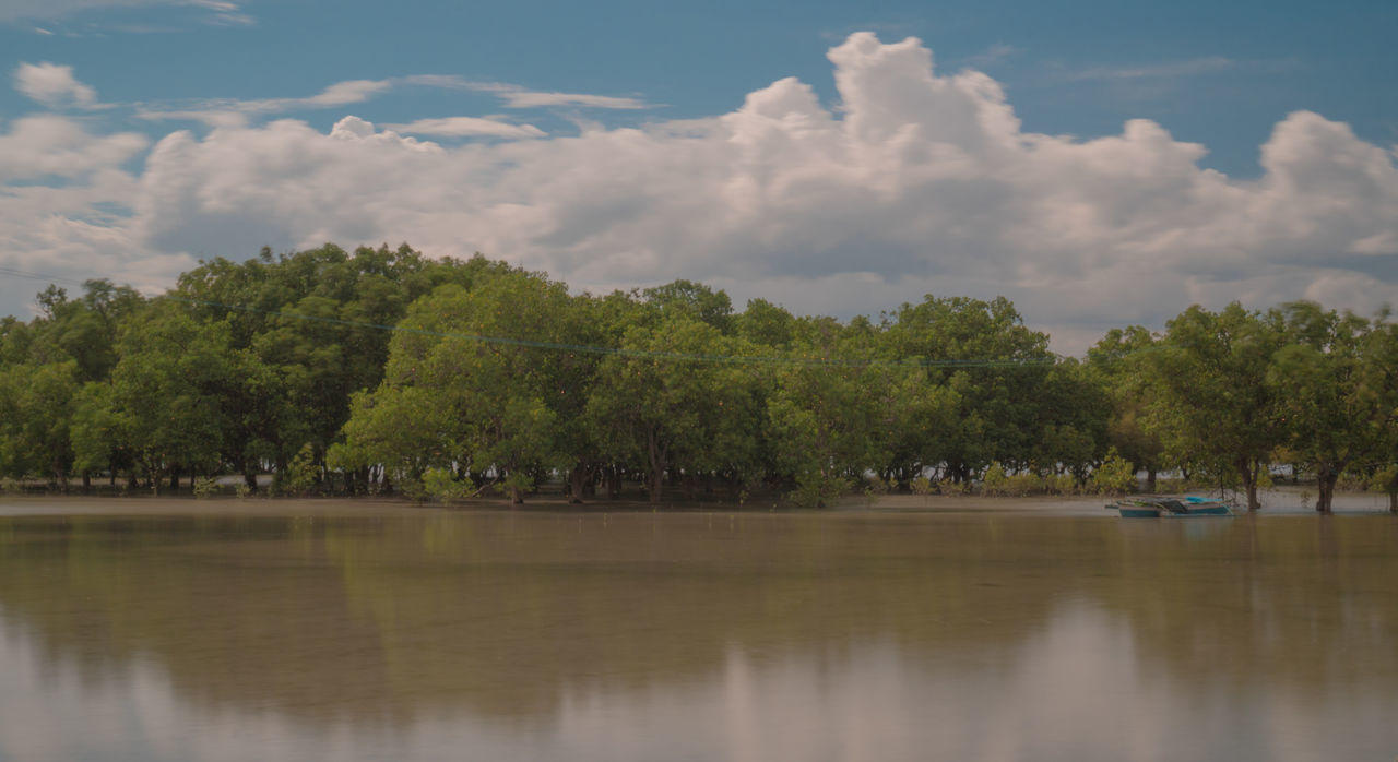 tree, sky, plant, water, cloud - sky, lake, beauty in nature, tranquility, scenics - nature, tranquil scene, waterfront, nautical vessel, nature, reflection, transportation, day, no people, mode of transportation, non-urban scene, outdoors