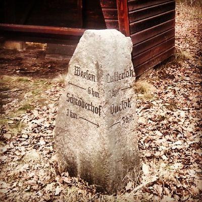 Steinalter Wegweiser nahe Lutterloh