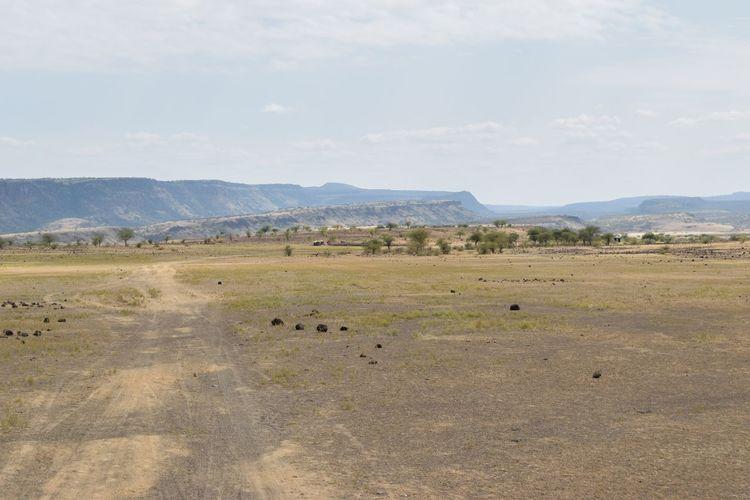 Arid landscapes against sky in rural kenya