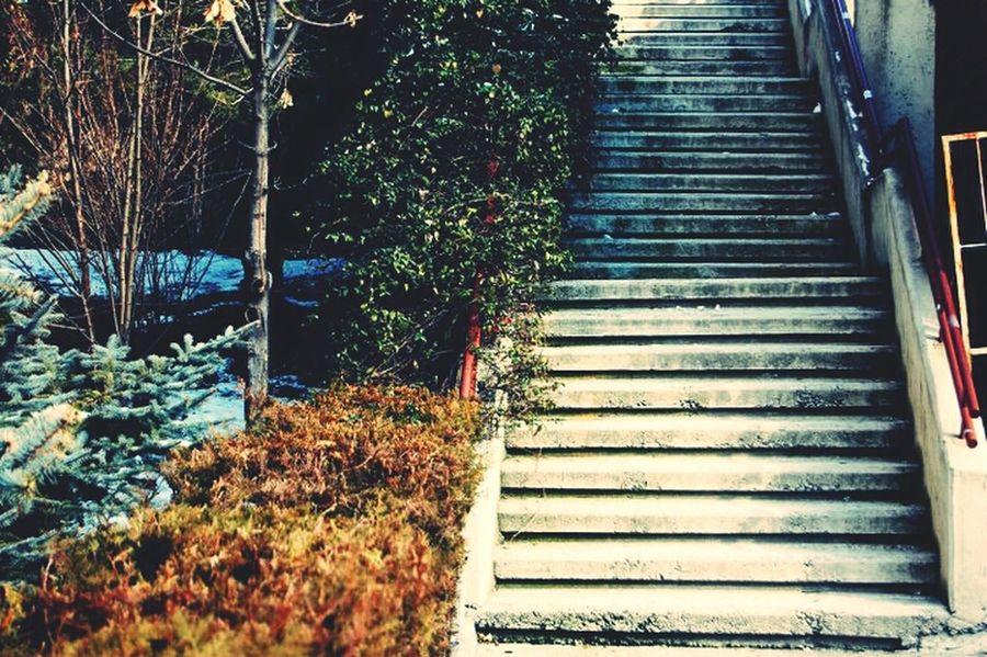 Stairs Street Photography Winter ...of 2012 @ankara