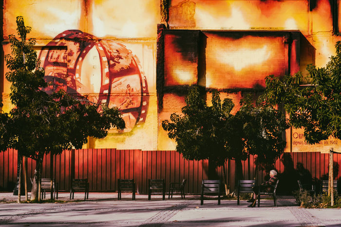 Façade Fire Life Oldlady Solitude Incidental People Reflection Lifestyles Street Night Men Outdoors Illuminated Building City People Building Exterior Nature Built Structure Plant Real People Architecture Tree A New Perspective On Life