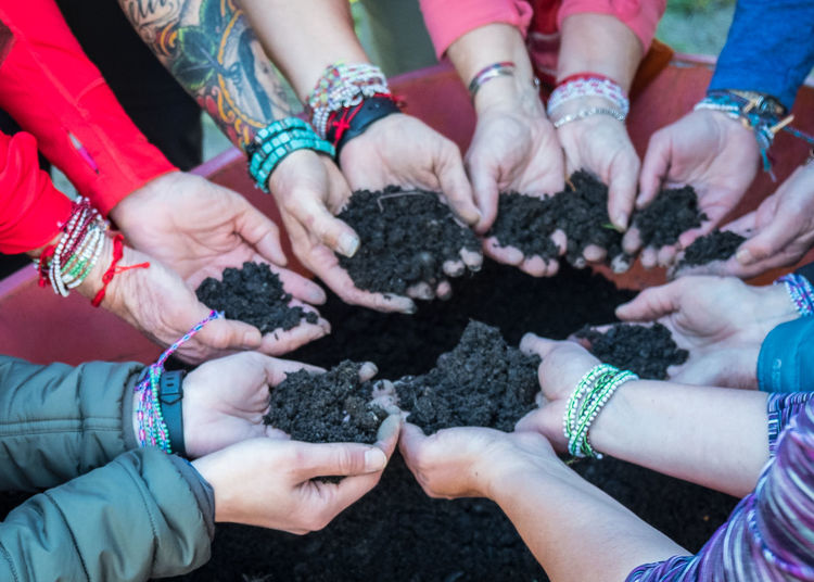 Volunteers help plant Lenga saplings after a forest fire in Torres del Paine National Park, Patagonia. Adult Beginnings Bonding Close-up Dirt Finger Food And Drink Gardening Group Group Of People Hand Hands Cupped High Angle View Holding Human Body Part Human Hand Leisure Activity Lifestyles People Planting Real People Togetherness Women The Photojournalist - 2018 EyeEm Awards