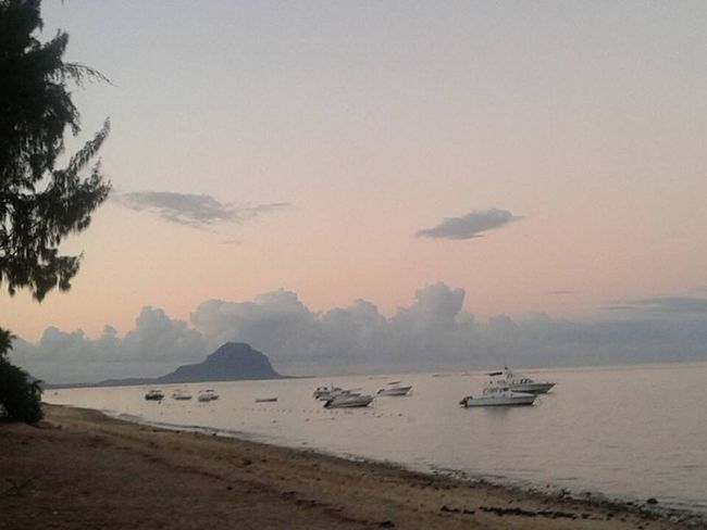 Sunrise From The Beach Sunrise_sunsets_aroundworld Sunrise Mauritius Maurice Water Sea Beauty In Nature Nautical Vessel Nature Tranquil Scene No People Mode Of Transport Scenics Beach Tranquility Mountain Tree Sunset Sky Outdoors Landscape Day