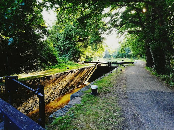 Idyllic view of the Basingstoke Canal approaching St johns village in the heart of the English countryside
