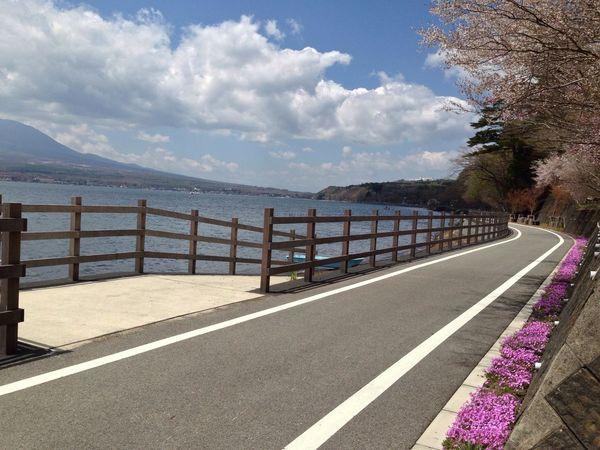 山梨 富士山 山中湖 サイクリングロード