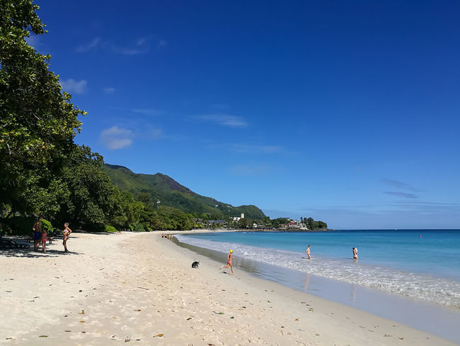 Beach Sand Sea Vacations Berjaya Beach Seychelles Sunny Summer Landscape Nature Travel Destinations Blue Tree Incidental People Beauty In Nature Tranquil Scene Tropical Climate Scenics Tourism Relaxation Tranquility Girl Aesthetic Travel Island Adventure