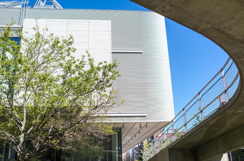 Architecture Boston Built Structure City Harvard Le Corbusier Modern Renzo Piano