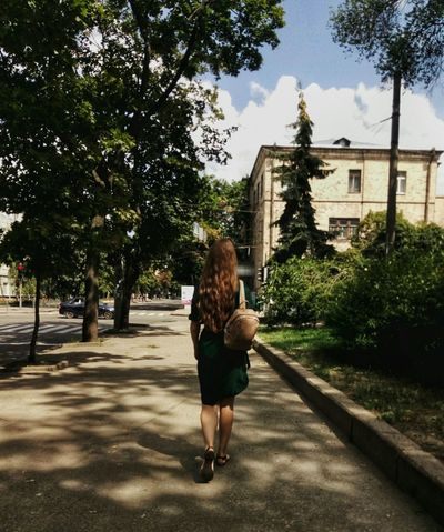 she's like another pretty tree just at the middle of the street Green Tree Full Length City Women Young Women Standing Rear View Walking Back Sky