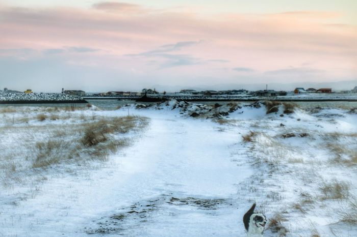Sky Nature Cold Temperature Cristmasmorning Winter Snow Iceland_collection Desember Landscape