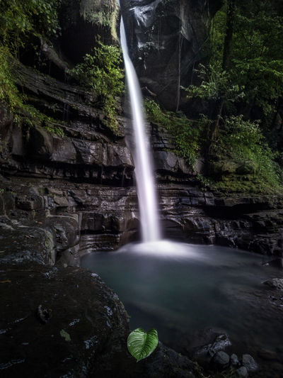 Waterfall Water Long Exposure Motion Nature Beauty In Nature Scenics Blurred Motion Outdoors Tree No People Forest Landscape See The Light Travel Destinations Day Power In Nature Amazing View Outdors No People Lost In The Landscape Be. Ready. Perspectives On Nature Waterfall In The Jungle Travel Photography Sulawesi Selatan EyeEmNewHere