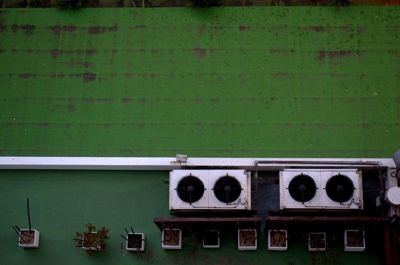 Backyard Green