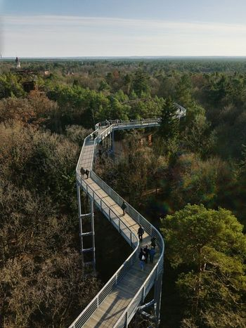 Treetops Treetopwalk High Angle View Sport Day No People Outdoors Tree Sky