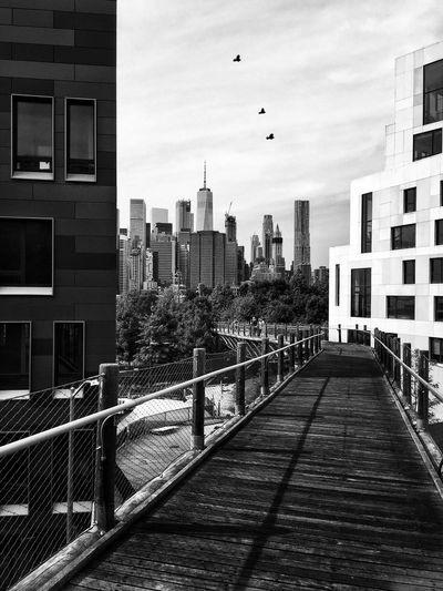 City view -
