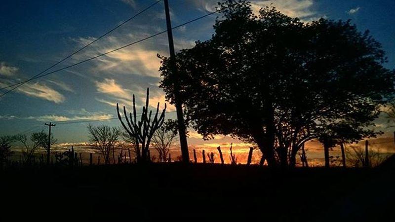 Photo Photographer Photograph Photograpy Instalike Instaphoto Instagood Portrait Instaportrait Foto Fotografia Instafoto Instafotografia Pordosol Sol Sun Sunshine Sunday Sunset Instagood Colors Ceudefogo Zoom Sonyz3 Love paraiba brazil 🌞 brasildosmeusolhos_