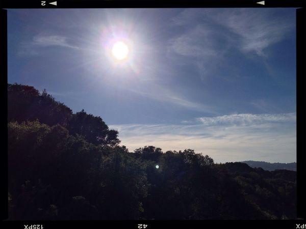 Beautiful trail day Briones  Zen Hike Sun