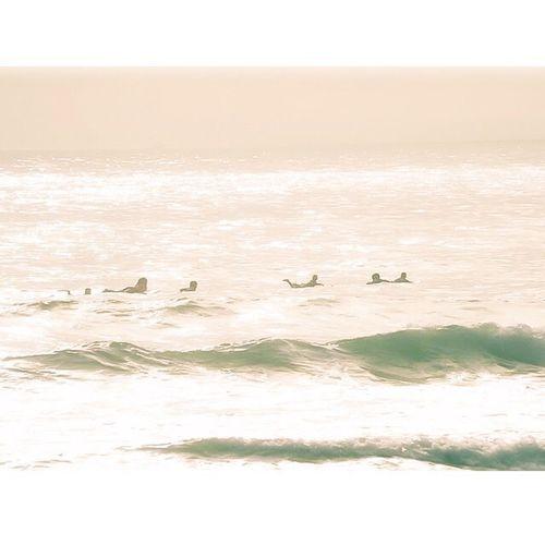 Sunshine Surfing Life Is A Beach Enjoying The Sun Taking Photos EyeEm Nature Lover