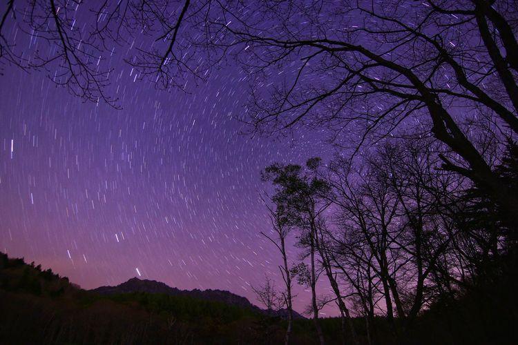 連休が終わる前に😅 一目惚れんず 銀河鉄道の夜♪ Astronomy Galaxy Tree Milky Way Star - Space Space Mountain Constellation Purple Sky Star Field Star