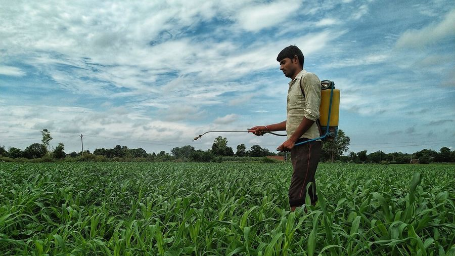 Man spraying insecticide on crops