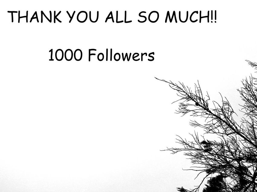 Much Appreciated Thank You My Friends 😊 Thank You ❤ Thanks  Thankyou