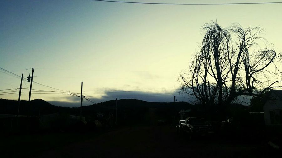 Dusk Sky Duskphoto Nature_collection Street Photography Tree Sunset Bare Tree Silhouette Clear Sky Sky