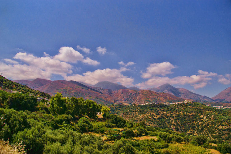 Wonderful view on the way towards the Lasithi Plateau on Crete Scenics - Nature Mountain Beauty In Nature Environment Cloud - Sky Sky Landscape Plant Tranquil Scene Nature Tranquility No People Tree Land Non-urban Scene Day Green Color Mountain Range Outdoors Travel Destinations Rolling Landscape Semi-arid EyeEm Best Shots EyeEm Nature Lover EyeEm Selects EyeEm Gallery Sony A6000 Sonyalpha Blue Sky Blue Sky And Clouds Blue Sky White Clouds Mount Ida Slopes Crete Crete Greece Crete Island Light And Shadow Sunlight High Plains Lasithi Lasithi Plateau Lasithi Hochebene