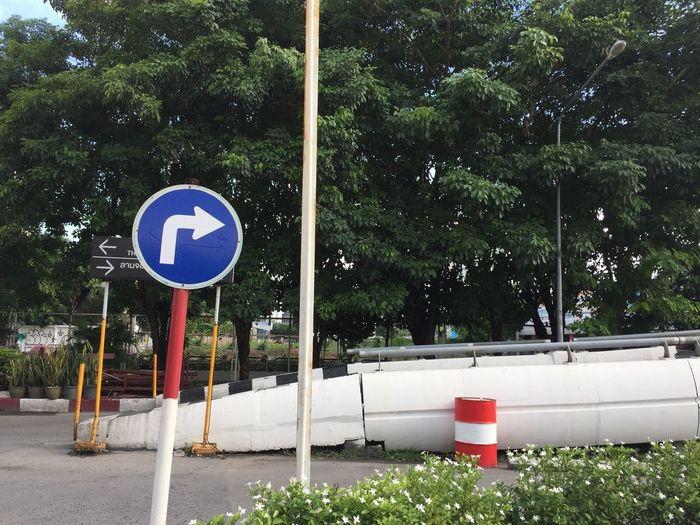 Plant Tree Sign