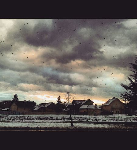 Original Experiences Birds In Flight Sky And Clouds Inner Peace Strong Feelings Nature Snow Wintertime Fresh Air...