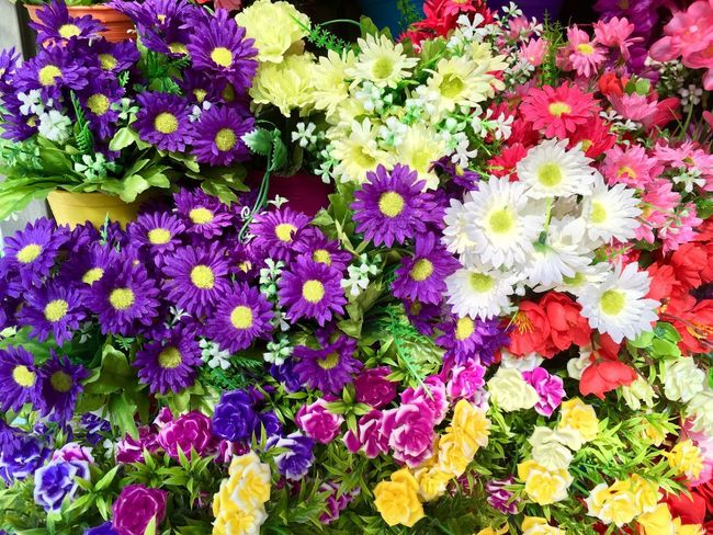 Multi colored background from plastic flowers Flowering Plant Flower Plant Fragility Vulnerability  Freshness Beauty In Nature Multi Colored Flower Head Growth Full Frame Nature High Angle View Variation Backgrounds Petal No People Day