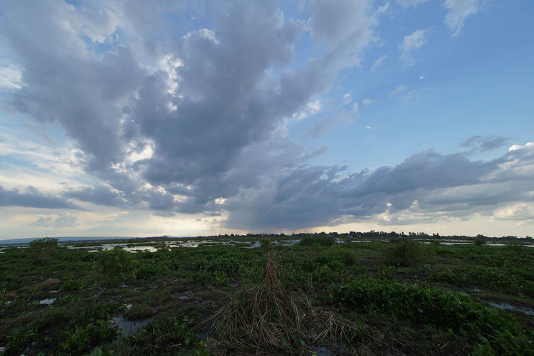 Beauty In Nature Cloud - Sky Day Field Grass Horizon Over Water Landscape Nature No People Outdoors Scenics Sea Sky Tranquil Scene Tranquility Water