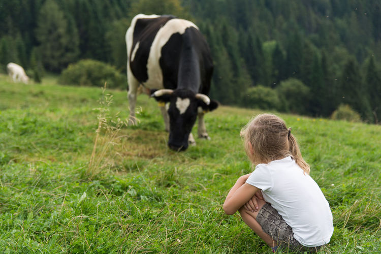 Children Animal Themes Children And Animals Cow Domestic Animals Field Girls Grass Livestock Mammal Nature One Animal One Person Real People Rear View Tree