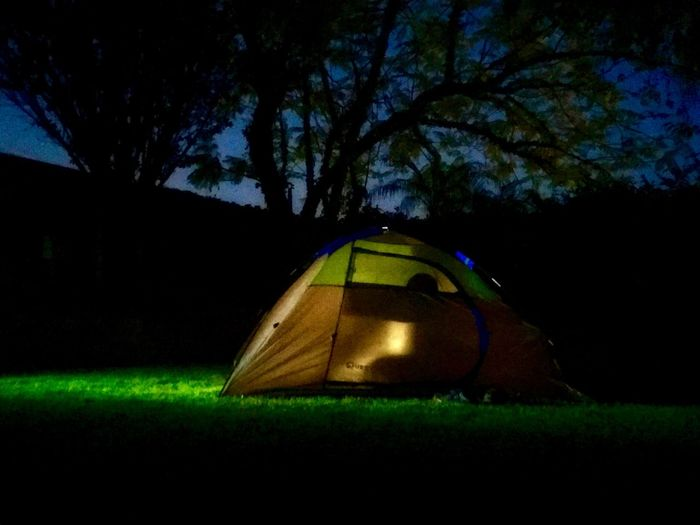 Backyard Camping Live for the Story The Great Outdoors - 2018 EyeEm Awards Plant Tree Green Color Nature Night No People Grass Illuminated Land Tranquility Beauty In Nature Glowing Outdoors Tent Dusk