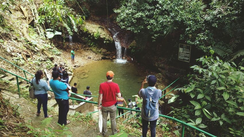 Waterfall Pool Geology Water Bush Rear View Women Leisure Activity Togetherness Real People Walking Men Outdoors Friendship Lifestyles Standing TreeBeauty In Nature Day Nature Water People Bamboo Grove Asa Wright Nature Centre Trinidad