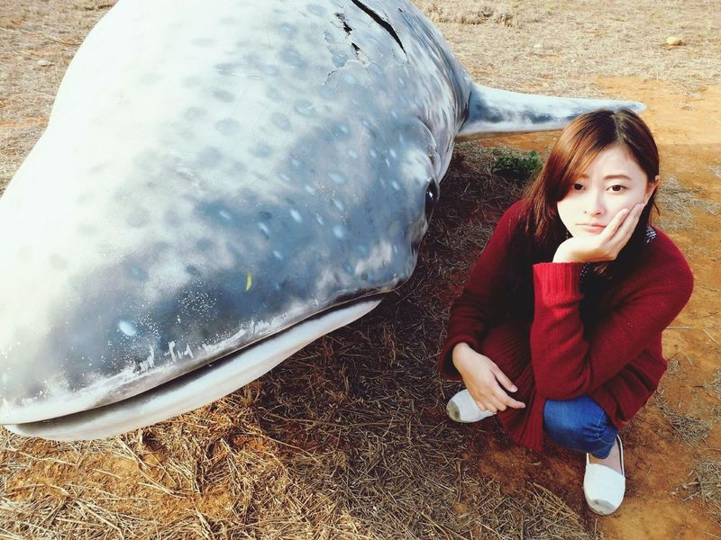鯊魚 Shark Whale Tunghai Hanging Out ThatsMe That's Me Enjoying Life 好想念
