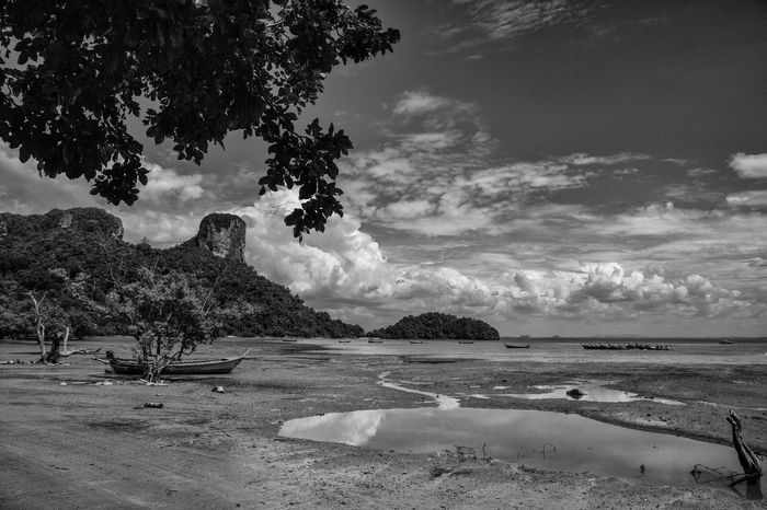 Beach Scenics Outdoors Tranquility Thailand Thailand Photos Travel Destinations Travel Blackandwhite Nature Water Beauty In Nature Black & White No People Sea Cloud - Sky Bnw_collection Bnw_captures Blackandwhite Photography Bwlandscape Tree Landscape Photography Travelphotography Black And White Collection  The Week On EyeEm EyeEmNewHere