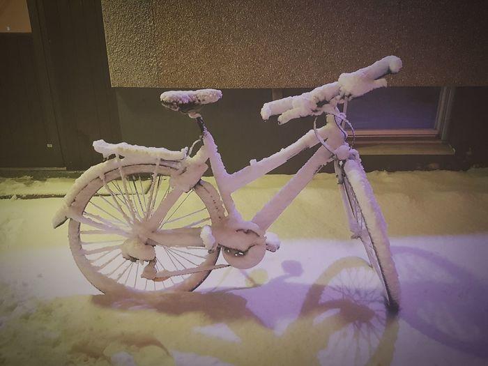 Snow Frozen Minus Degrees Cold Snow Powder Bicycle