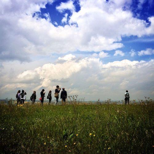 Touching the sky NEM Street NEM Clouds NEM Landscapes NEM Green