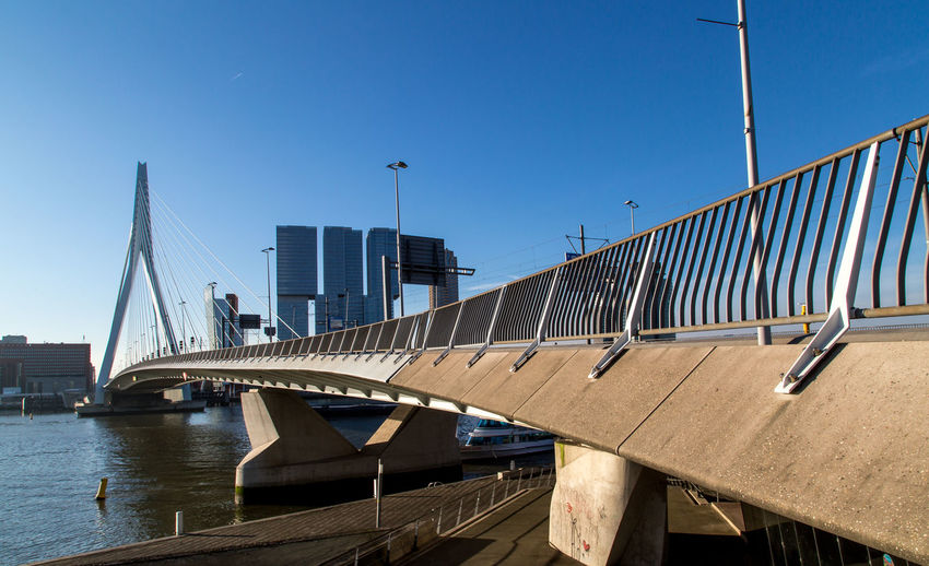 Ersamusbridge in Rotterdam, Netherlands Architecture Blue Bridge Bridge - Man Made Structure Building Exterior Built Structure City Cityscape Clear Sky Composition, Day Ersamus Harbor Modern Nautical Vessel No People Outdoors River Sky Skyscraper Travel Destinations Urban Skyline Water