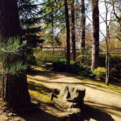 Enjoying Nature Taking Photos Japanese Garden Eye Em Nature Lover