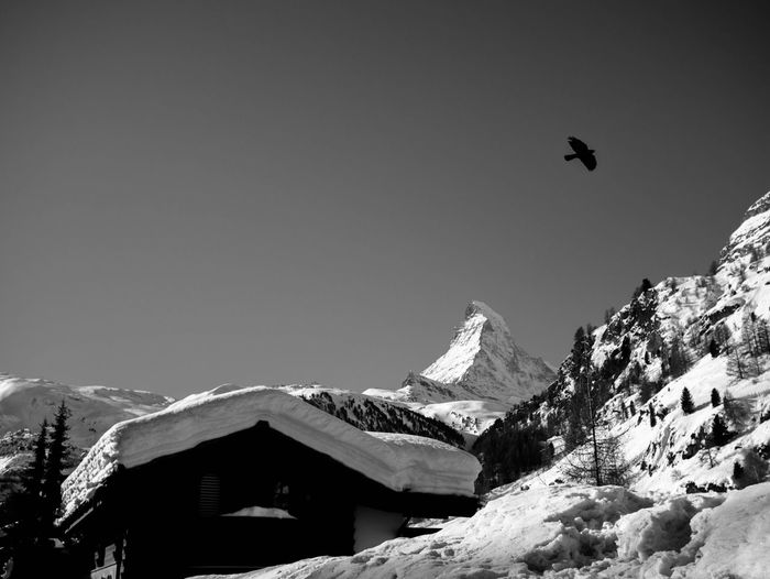Zermatt Snow Mountain Winter Cold Temperature Nature Clear Sky Day Outdoors Beauty In Nature Copy Space Snowcapped Mountain Mountain Range Scenics Building Exterior No People Architecture Low Angle View Built Structure Tranquility Animal Themes