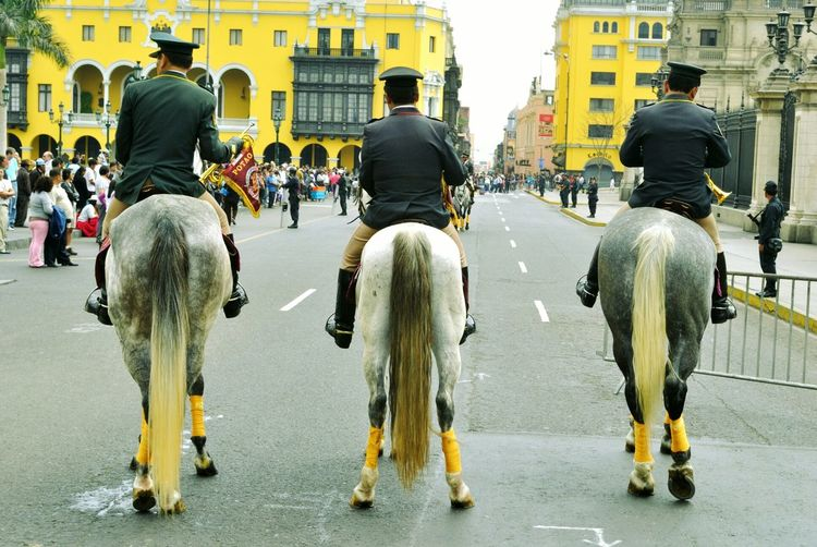 People Riding Horses During Parade