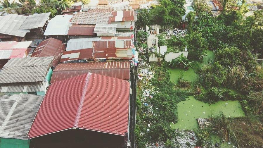 High angle view of houses by trees