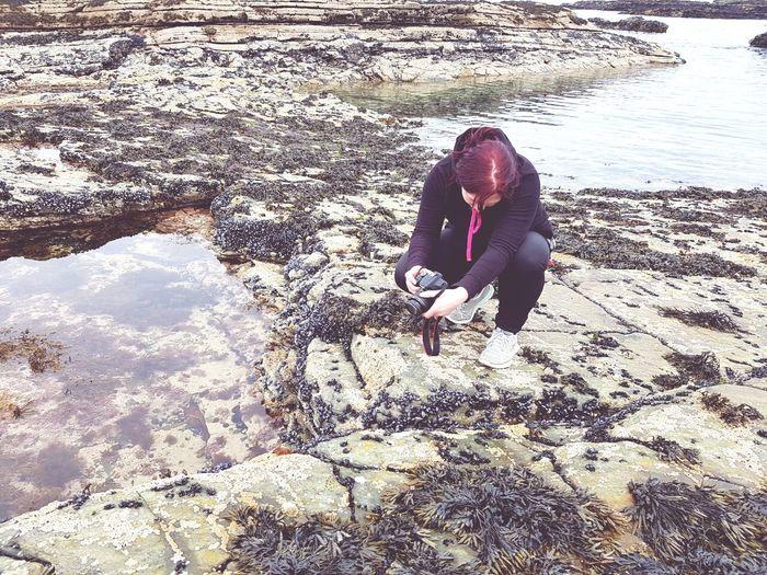 Water Nature Irlande Muscheln Ebbe