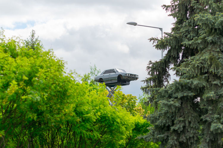 Low angle view of car on hydraulic platform amidst trees