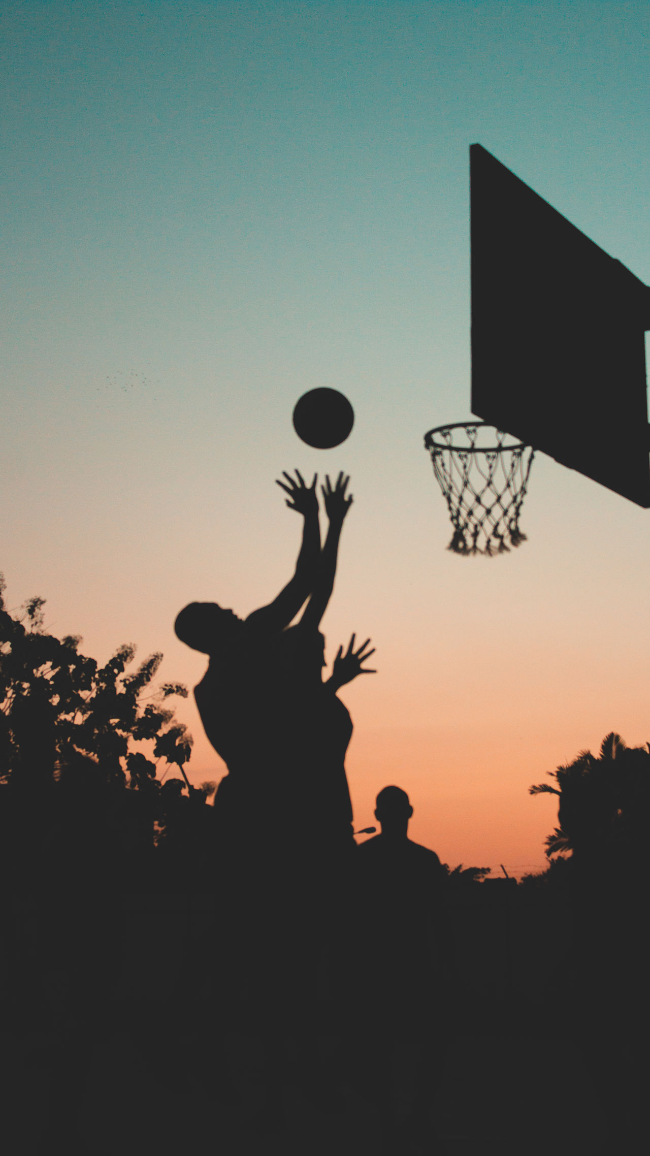 Silhouette people playing basketball during sunset