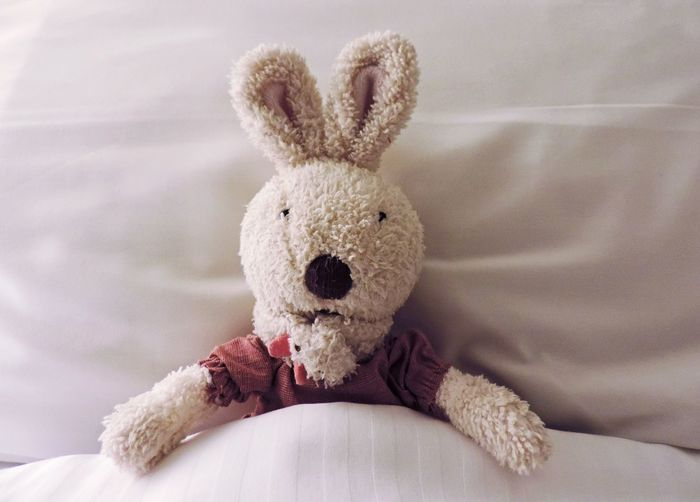 Rabbit Toy Soft Toy Bunny  Bed Cute Blanket