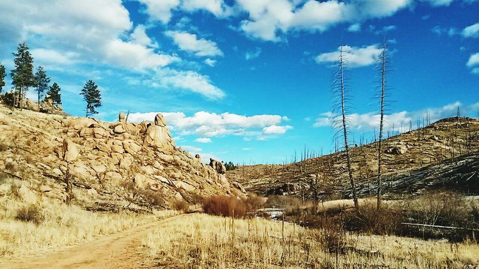 Hello World Buffalocreek Colorado