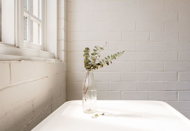 White flowers in vase against wall at home