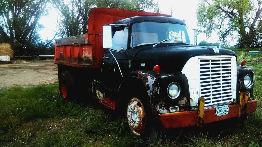 Outdoors Day No People Forgotten Low Angle View Springtime International Harvester Farming Neglect Overgrown Dump Truck Rust