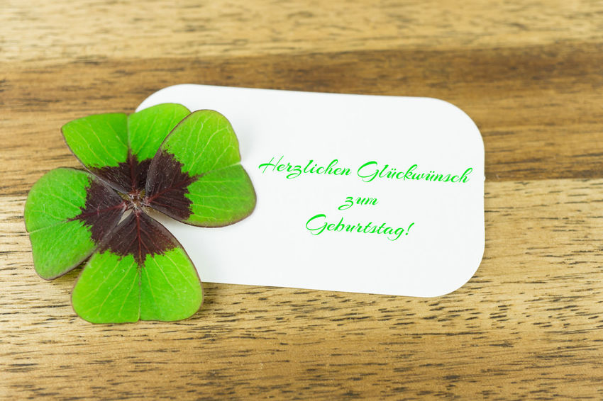 Clover Four-leaf Clover Geburtstag Herzlichen Glückwunsch Luck Lucky Birthday Close-up Communication Congrations Day Fortune Four-leaved Green Color Greeting Card  Greetings High Angle View Indoors  Leaf No People Paper Table Text Wood - Material Wooden Background